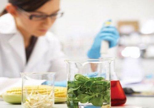 Πώς επικυρώνω μία αναλυτική μέθοδο κατά τη διάρκεια της χημικής ανάλυσης και ποιοτικού ελέγχου τροφίμων